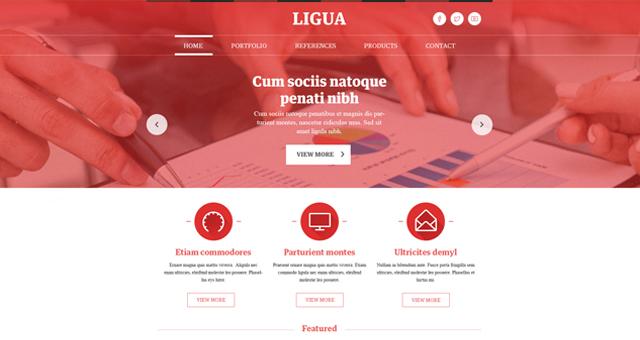 Ligua corporate